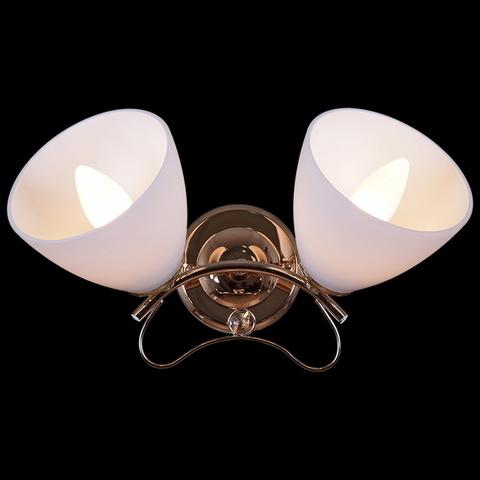 00996-0.2-02 светильник настенный