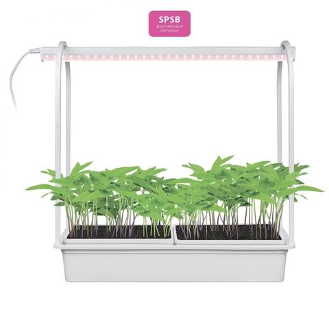 ULT-P54-10W/SPSB IP20 WHITE Набор «Минисад», светильник для растений светодиодный с подставкой. Спектр для рассады и цветения. TM Uniel