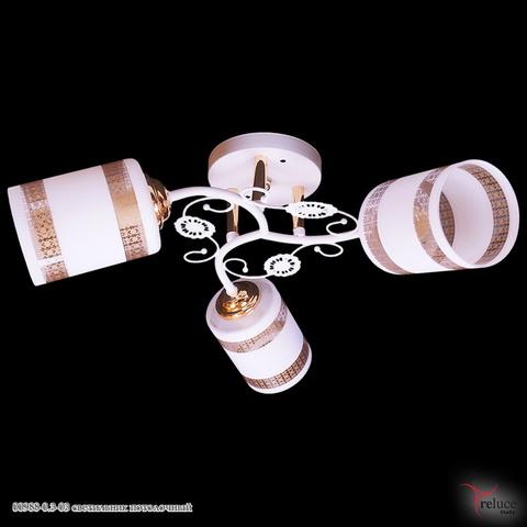 00988-0.3-03 светильник потолочный