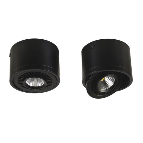Потолочный светильник Favourite 1777-1C