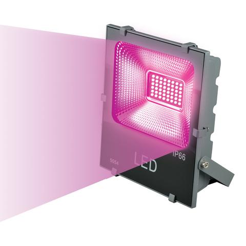 ULF-P41-50W/SPBR IP65 170-265В GREY картон Прожектор для растений светодиодный. Спектр для рассады и досвечивания в период роста. Цвет серый. TM Uniel