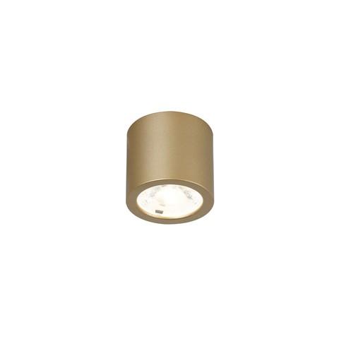 Потолочный светильник Favourite 2807-1C