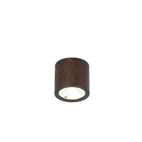 Потолочный светильник Favourite 2809-1C