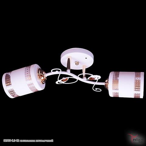 00995-0.3-02 светильник потолочный