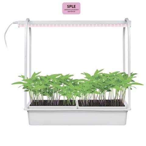 ULT-P54-10W/SPLE IP20 WHITE Набор «Минисад», светильник для растений светодиодный с подставкой. Спектр для фотосинтеза. TM Uniel