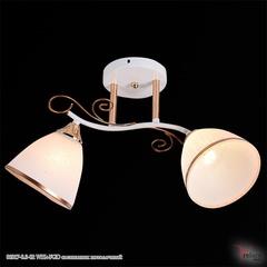 01017-0.3-02 WH+FGD светильник потолочный