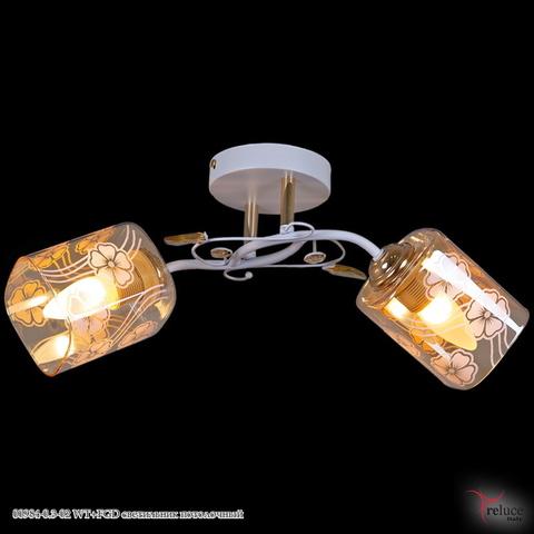 00984-0.3-02 WT+FGD светильник потолочный