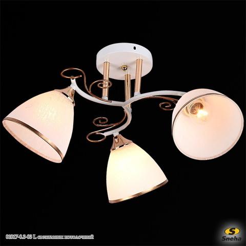 01017-0.3-03 WH+FGD светильник потолочный