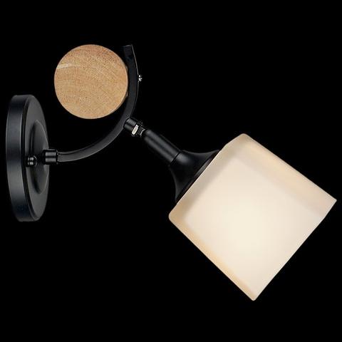04217-0.2-01 BK светильник настенный