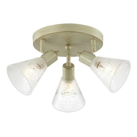Потолочный светильник Favourite 1794-3U