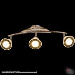 00640-0.3-03DA SWT+FGD светильник потолочный