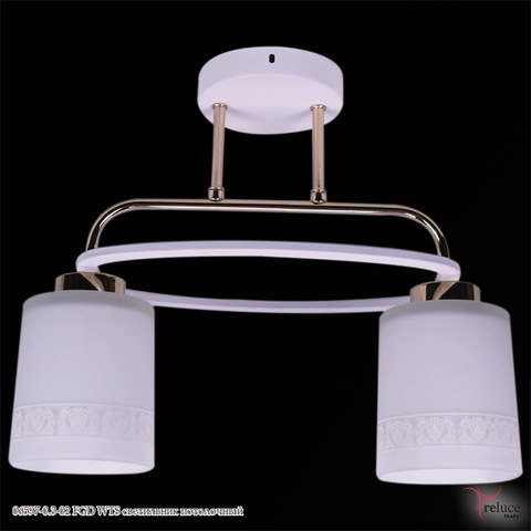 06597-0.3-02 FGD WTS светильник потолочный