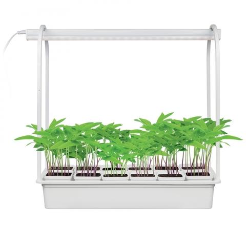 ULT-P34-10W/SPBR IP20 WHITE 12 Набор «Минисад», светильник для растений светодиодный с подставкой. Спектр для рассады и досвечивания в период роста. 12 кашпо в/к, белые. TM Uniel