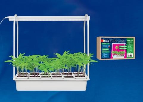 ULT-P34-10W/SPSB IP40 WHITE 12 Набор «Минисад», светильник для растений светодиодный с подставкой. Спектр для рассады и цветения. 12 кашпо в/к, белые. TM Uniel
