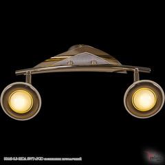 00640-0.3-02DA SWT+FGD светильник потолочный